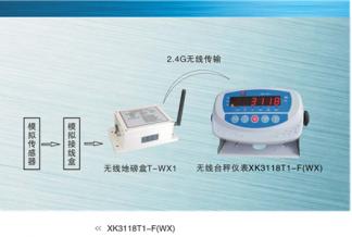 Весовой индикатор ХК3118Т1-F(WX)